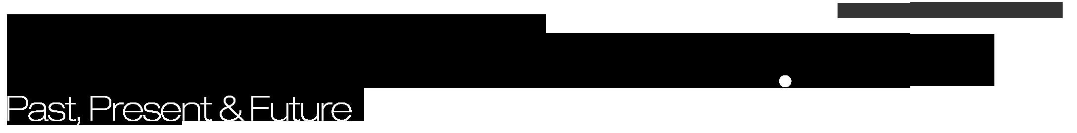 JulilandUniverse.com Retina Logo